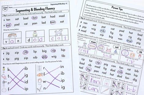 Beginning Fluency: Segmenting & Blending (for students mastering nonsense word fluency)